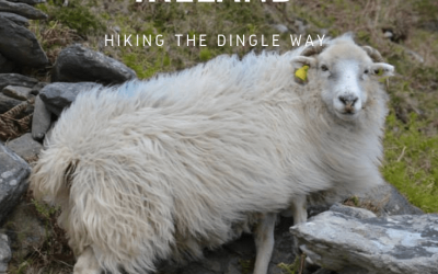 Dingle Peninsula in Ireland : hiking the Dingle Way